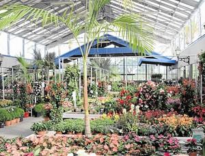Empresas n mero 1 de m laga for Agro jardin estepona